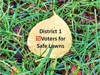 district1-Safelawns